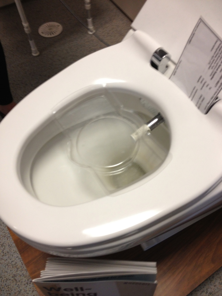 Easy Clean Toilet